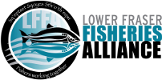 Lower Fraser Fisheries Alliance